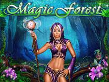 Выигрыши на онлайн автомате Волшебный Лес от Playson