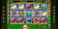 играть в автомат Crazy Monkey